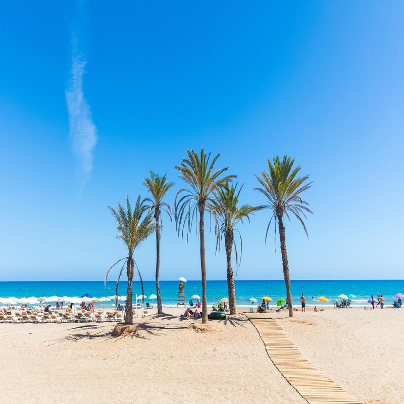 Properties in Alicante